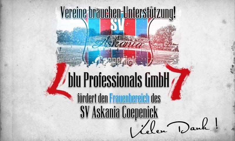 Sponsorenzertifikat - blu Professionals Gmbh - Frauenbereich 2015